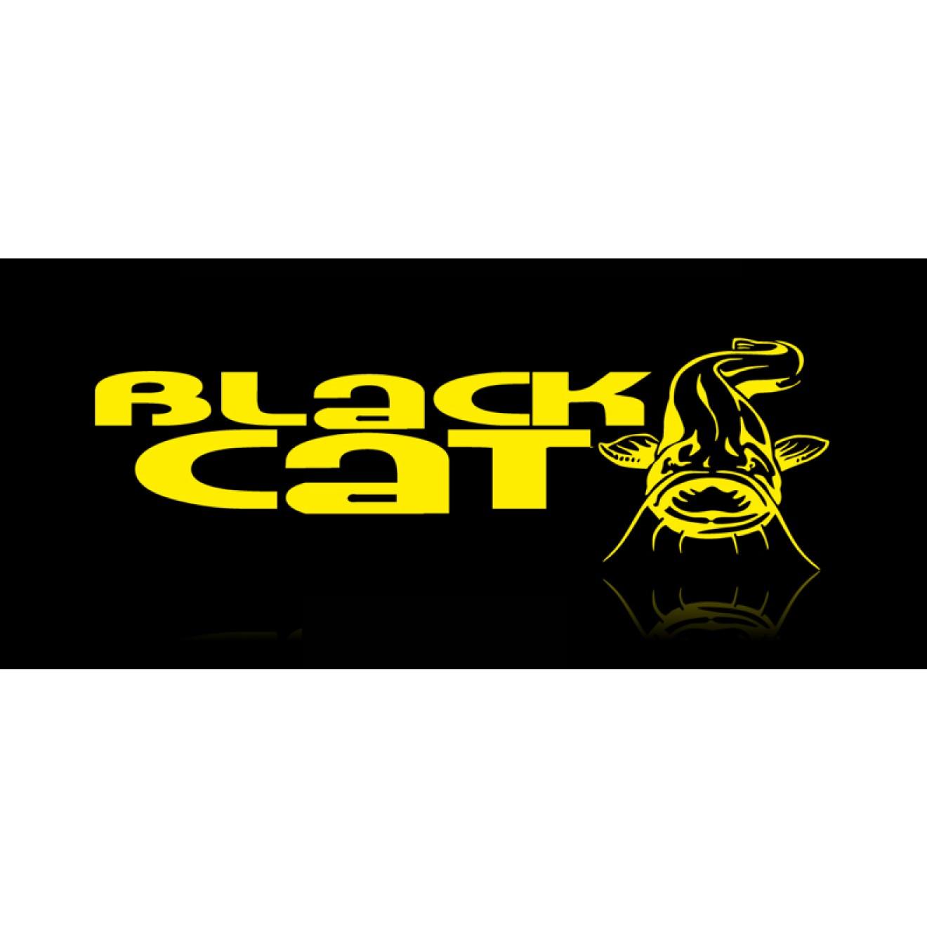 Black Cat Wild Catz