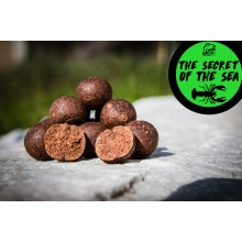 WATERCRAFT Boilies The Secret of the Sea 25mm 3kg im Eimer